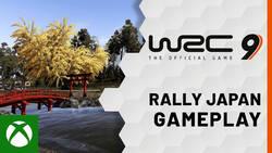 WRC 9 wciąż wygląda plastikowo